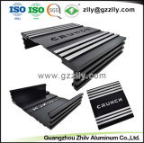 Perfil de alumínio de extrusão de alumínio para equipamento de áudio do carro o radiador