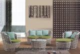 Напольная софа сада мебели патио мебели ротанга (TG-030)