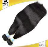 ブラジルの毛(KBL-BH)の加工されていない毛