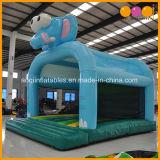 De hete Springende Opblaasbare Uitsmijter van de Olifant van het Huis Slae voor het Stuk speelgoed van Jonge geitjes (aq01603-1)