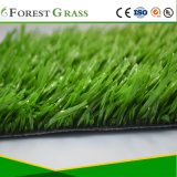フットボールの草か人工的なフットボール競技場