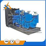 Горячий генератор сбывания 230V молчком тепловозный