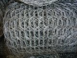 Weight off Galvanized Hexagonal Wire Mesh Chicken Wire Mesh Cage