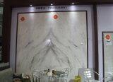 Tuiles de marbre blanches exclusives neuves de Castro Slabs& pour le revêtement de mur et de sol, fond de Bookmatched, marbre blanc d'Arabescato Venato, marbre de blanc de la Chine