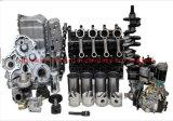 Новый двигатель Yanmar детали