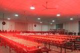 Stadiums-Stab-Licht der Vello Wäsche-Wand-RGBWA 5in1 (LED Minibar512)