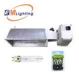 Систем гидропоники 315 см вод расти комплект освещения с 315W CMH лампу