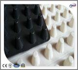 20mm Plastik-HDPE Grübchen-Entwässerung-Blatt-wasserdichter Entwässerung-Vorstand
