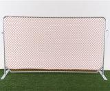 Оптовые панели загородки звена цепи обеспеченностью высокого качества