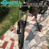 Carbon Steel Adult Dirt Road Mountain Electric Bike