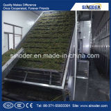 Secador amplamente utilizado da correia do engranzamento do transporte/secador vegetal