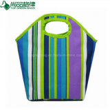 Eco Fashion tendance vert isolé une poignée ronde refroidisseur fourre-tout sac de glace
