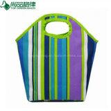 Eco grüne modische Form isoliert ringsum Griff-Eistote-Kühlvorrichtung-Beutel