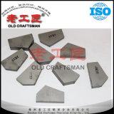Wolframzementiertes Karbid-Bergbau-Spitzen für Bohrmeißel