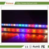 Pollo/Turcky Keisue LED de la producción de carne luz crecer