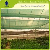 Verde 50%, 60%, panno dello schermo di 80%, agro rete dello schermo