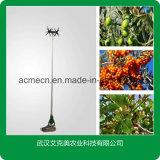 El metal de la herramienta de recogida de fruta Fruta fruta Jardín eléctrico Selector selector