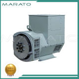 Stamford schwanzlosen elektrischen Generator kopieren