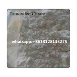 Citraat CAS 54965-24-1 Nolvadex van Tamoxifen van de Steroïden van het Oestrogeen van 99% het Anti