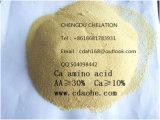 Polvere organica 14-0-0 dell'amminoacido
