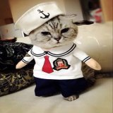 저가 주문 애완 동물 의류 애완 동물 고양이는 애완 동물 부속품을 입는다