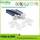 Faisceau de câblage du faisceau de fils du câble personnalisé OEM ODM Manufacture d'assemblage