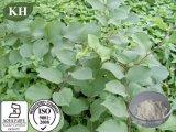 Natuurlijke Zuivere Resveratrol /CAS Nr.: 501-36-0