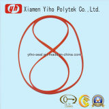 Professional High Quality Gasket Ring for Auto Shares clouded