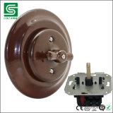 Interruptor rotatorio de la pared de la nueva del estilo porcelana de cerámica de la vendimia con la placa