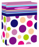Sac à provisions UV de papier d'emballage de cadeau de vernis d'endroit