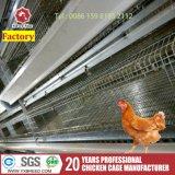 Les élevages de volailles de l'équipement Machine Bird Cage de poulets à griller au Pakistan