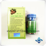 OEM 고품질 Garcinia Cambogia 추출 체중 감소 캡슐