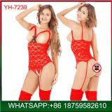 Novo design a baixo preço no atacado a mulher de lingerie sexy mostrando os bocais de lubrificação