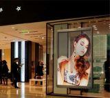 Publicidade em vídeo Monitor LED transparente de vidro