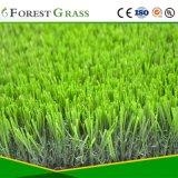 Qualidade superior para jardim relva sintética (VS)