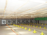 壁のファン換気扇の軸流れの換気扇の換気装置