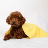 Toalha seca do animal de estimação material de Microfibre, gato e toalha do cão