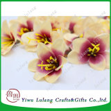 Simulación de mayorista Cartland Thai Orchid Seda artificial Flores jefe