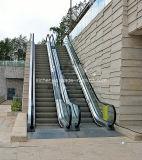 Indoor Escalator Fabrication
