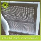 Fertigung-Architekturentwurfs-künstlerische konzipierte Qualitäts-multi Farben-Aluminiumdecken-Fliesen