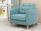 Il sofà caldo del salone del tessuto di stile dell'Europa di vendite include il cuscino