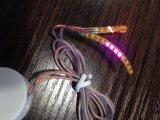 El LED azota el regalo al por mayor para Víspera de Todos los Santos