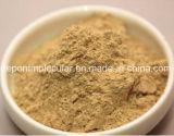Enzian-Wurzel-Auszug, Gentiopcroside 3%, 5%, fördern Verdauung, schützen Leber