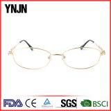 Eyeglasses сплава рамки нового типа Ynjn Unisex полные (YJ-J8308)