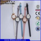Relojes ocasionales de las señoras del cuarzo del reloj de la correa de cuero del ODM (Wy-073B)