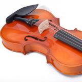 Отделка лоска Antique обмундирования скрипки переклейки