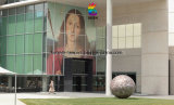 Zoll gedruckter Abziehbild-Vinylaufkleber-Fenster-Film