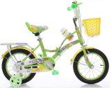 New  &#160をからかう; 折るBike 自転車を折っている子供
