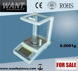 digitaal Groot het Wegen van de Interface van het Windscherm RS232 van het Glas 0.0001g 0.1mg Saldo