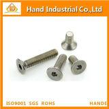 Parafuso principal de Csk do soquete Hex do aço inoxidável M6 DIN7991